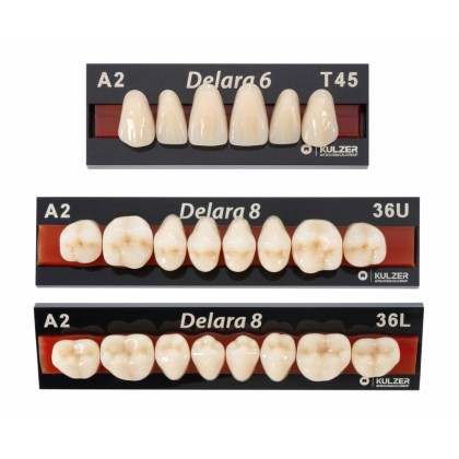 Kulzer Delara 6/8 Acrylic Teeth (NEW PRODUCT) – 1 Card