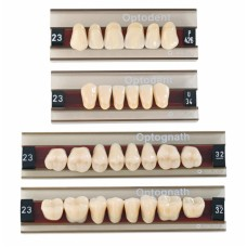 Kulzer Optodent / Optognath Acrylic Teeth (3 Layer) - 1 Set