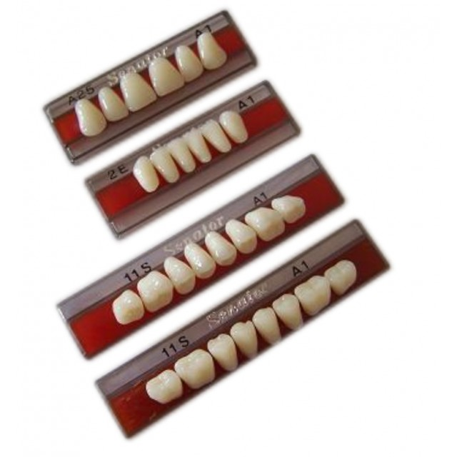 Wright Senator - UK - 3 Layer Acrylic Teeth